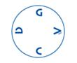 gacd_logo_110x90